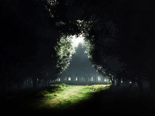 Darkness_to_light_1600x1200
