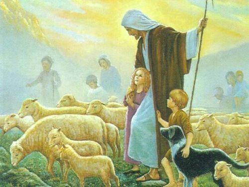 Jesus_Sheep-03