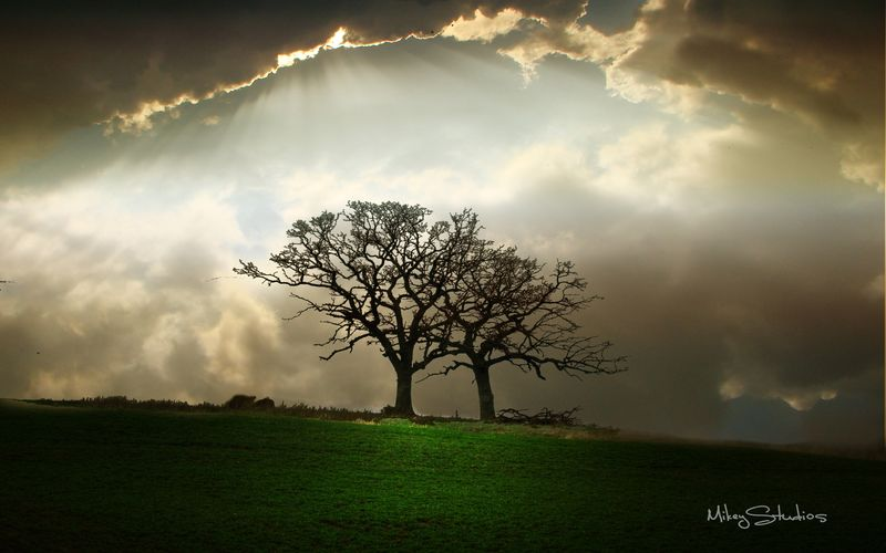 Storm_Brewing_by_MikeyStudios